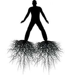 roots vector image vector image