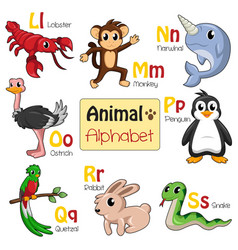 Alphabet animals from l to s vector
