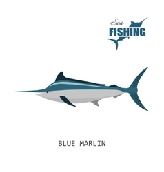 Blue marlin Sea fishing vector image