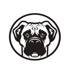 boxer or pit bull dog head icon vector image