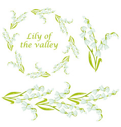 Cartoon lily of the valley spring flower set vector