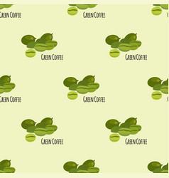 green coffee beans seamless pattern background vector image