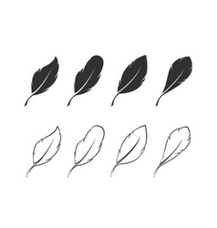 group feather on white background easy vector image