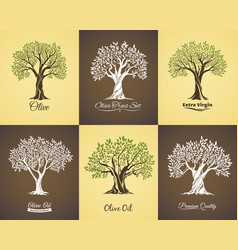 olive tree icons with branches leaves oil labels vector image