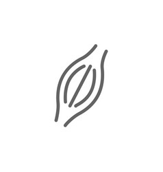 simple muscle line icon symbol and sign vector image
