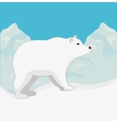 Arctic bear animal vector image