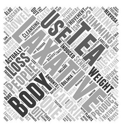 Laxatives And Weight Loss Word Cloud Concept vector image vector image