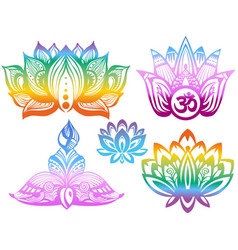 ornamental color lotus flowers vector image vector image