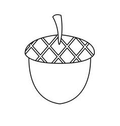 Acorn nuts nature fruit natural image vector
