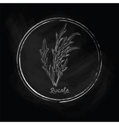 Dark rucola vector