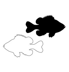 Pumpkinseed sunfish silhouette vector