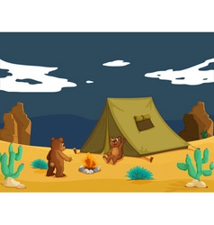 Bears camping vector image vector image