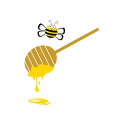 Bee and honey in colorful vector