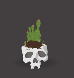 cactus and skull vector image