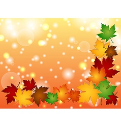 Maple leaves border with light effects vector image