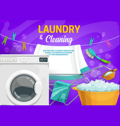 Washing machine and detergent laundry cleaning vector