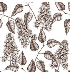 pattern with lilac tree sketch vector image vector image
