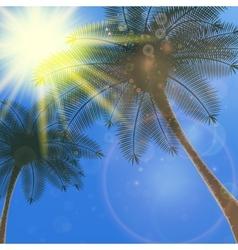Blue sky with summer sun burst background vector