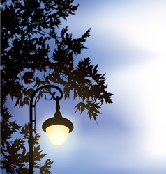 Glowing lantern surrounded maple branches vector
