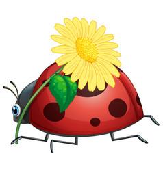 Ladybug holding yellow flower vector