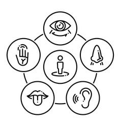 Set icons on a theme sense organs vector