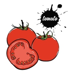 Vegetables red tomato vector