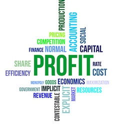 word cloud profit vector image vector image
