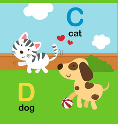 Alphabet letter c-cat d-dog vector