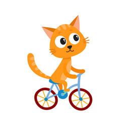Cute little cat kitten character riding bicycle vector