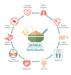 Foods infographics amaranthus or oatmeal foods vector