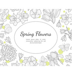 spring flowers banner template with wild meadow vector image
