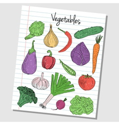 Vegetables doodles lined paper colored vector