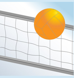 volleyball ball and net on light blue background vector image