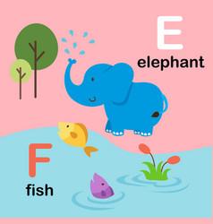 alphabet letter f-fish e-elephant vector image vector image