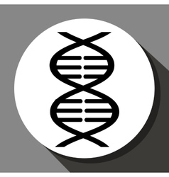 DNA structure icon vector image