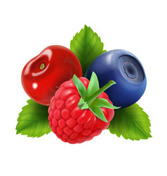 ripe berries raspberry blueberries and cherry vector image