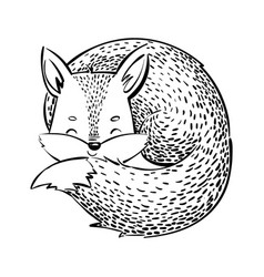 the sleeping fox cartoon fox on white background vector image