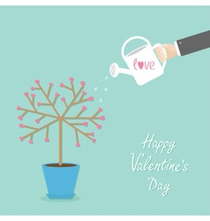 Happy Valentines Day Love card Tree in the pot vector image