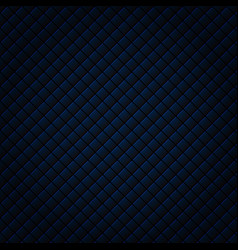 abstract black and blue subtle lattice square vector image