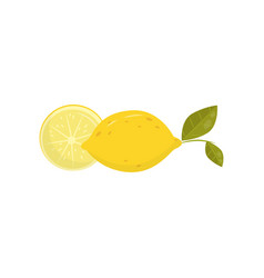 cartoon of half and whole lemon with vector image