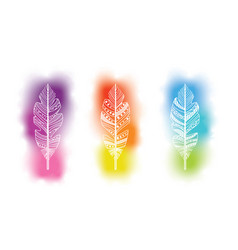 feathers silhouette with watercolor background vector image