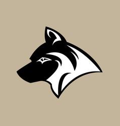 head wolf image vector image