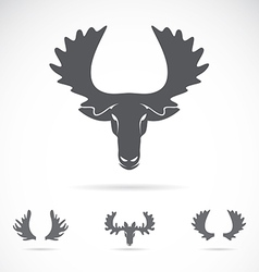 Image of an moose head vector