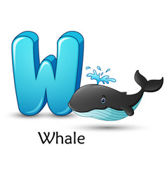 Letter w is for whale cartoon alphabet vector