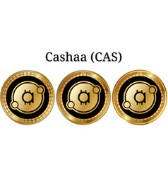 Set of physical golden coin cashaa cas vector