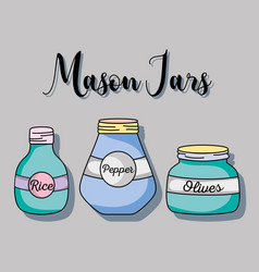 color jars mason glass decoration vector image