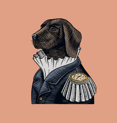 Dog officer or military man in old uniform vector