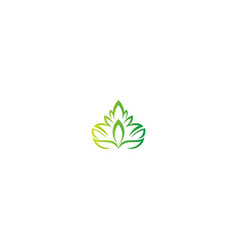 green leaf abstract decorative logo vector image