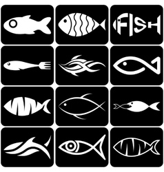 Set of creative white fish icons on black vector image vector image
