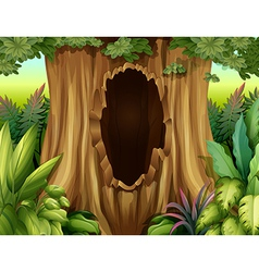 A hole in a big tree vector image vector image